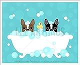 159D - Two Boston Terrier Dogs Peeking in Bubble Bath Bathtub UNFRAMED Wall Art Print by Lee ArtHaus