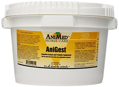 AniMed Anigest Digestive Supplement for Horses, 10-Pound