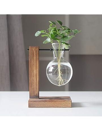Magiin Jarrón de Vidrio Transparente Terrario de Plantas Colgantes con Soporte de Madera Maciza Retro para