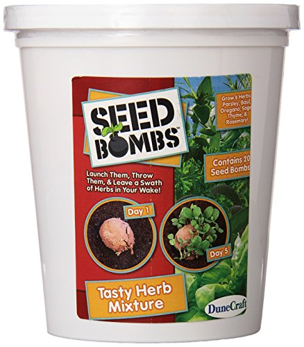 (DuneCraft Tasty Herb Mixture Seed Bomb Bucket Science Kit)