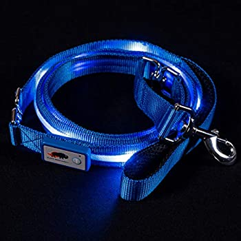 LOUISVILLE UNIVERSITY CARDINALS LIGHT UP LED DOG COLLAR or LEASH ALL SIZES