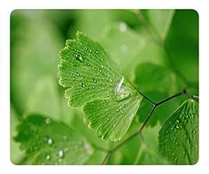 Greenery Design Rectangular Mouse Pad Dewdrop