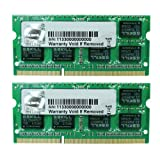 G.SKILL 8GB (2 x 4GB) 204-Pin DDR3 SO-DIMM 1333 (PC3 10600) Laptop Memory Model F3-1333C9D-8GSL