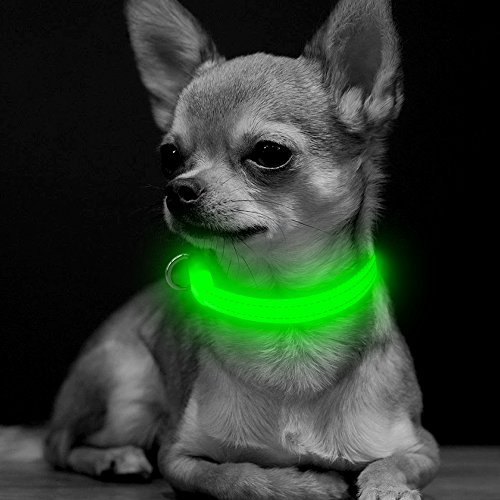 BSeen LED Dog Collar, USB Rechargeable Glowing Safety Pet Collar, Reflective Nylon Adjustable Light Up Collars for Small Dogs& Cats (XS, Green)