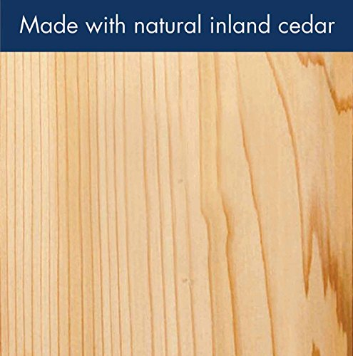 Woodlink Model AT4 Cedar Bird Feeder with Suet Cages