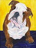 Cheap Caroline's Treasures SS8415CHF English Bulldog Flag Canvas, Large, Multicolor