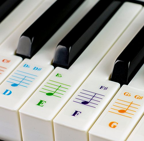 Color Piano Stickers for 49/61/ 76/88 Key Keyboards – Transparent and Removable with Free Piano Ebook