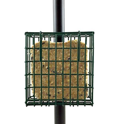 Droll Yankees SFPC Suet Feeder Pole Clamp Single