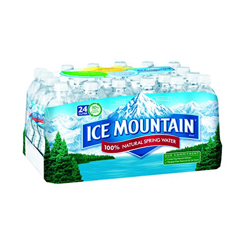 Ice Mountain Brand Natural Spring Water,16.9 Fl Oz (Pack of 24)