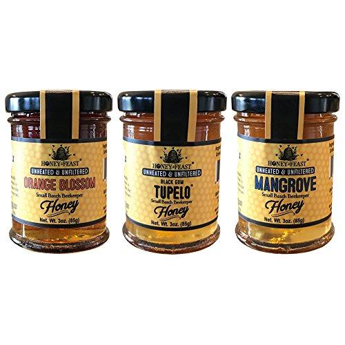 Gourmet honey variety pack. Orange Blossom honey, Black Gum Tupelo honey, Mangrove honey 3oz trio. Honey Feast brand raw local honey. USA (Desert Blossom Honey)