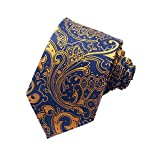 Paisley Ties for Men Jacquard Woven Necktie FXICAI Business Fashion Classic Casual Tie Bar Clip Set (Golden)