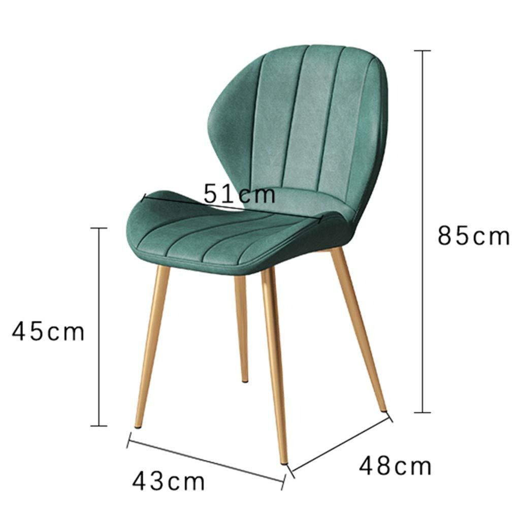 HEJINXL matrumsstol läder smidesjärn fötter med halkskydd funktion för kontor vardagsrum stol badstol med ryggstöd (färg: C) b