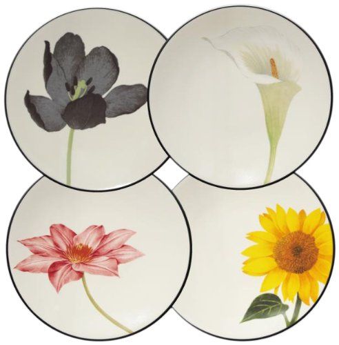 - Noritake Colorwave Floral Appetizer Plates, Graphite Black, Set of 4