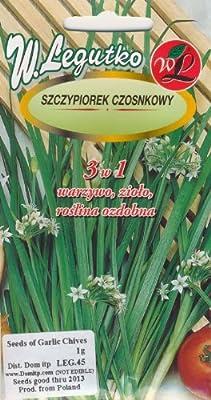 Polish Chives Garlic Seeds - Szczypiorek Czosnkowy
