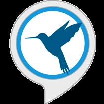 Sons Ambiants : Des Oiseaux