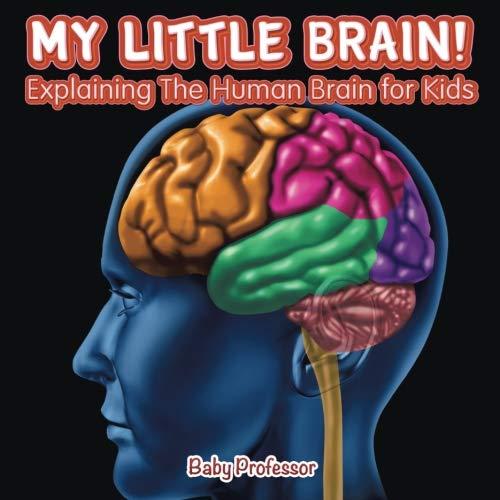 My Little Brain! - Explaining The Human Brain