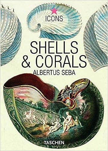 Shells & Corals (Icons): Albertus Seba: 9783822832523: Amazon com: Books