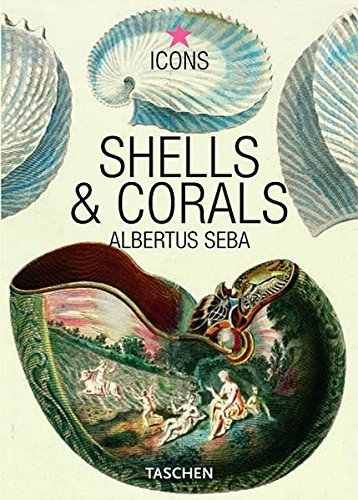 Albertus Seba. Shells & Corals (Icons)