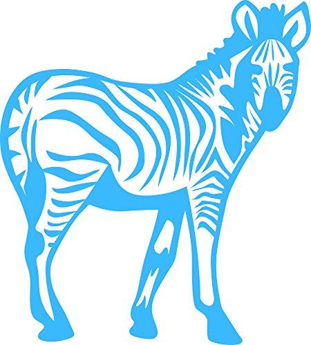 Ob Zebra - 4