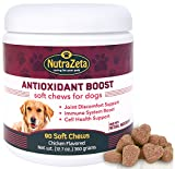 Natural Anti Inflammatory Joint Supplement for Dogs – Premium Antioxidants for Dogs to help ease Hip & Joint discomfort + Immune System Boost and Cell DNA Health Protection – 90 soft chews – Made USA Review