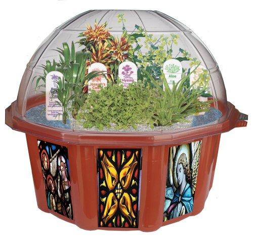 Dome Terrarium Kit - DuneCraft Dome Terrariums - Biblical Garden