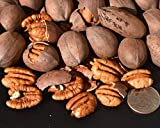 Inshell 12 oz Wild-harvested Texas Native Pecans-Fresh Direct Ship