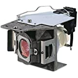 CTLAMP Replacement Projector Lamp/Bulb with General Housing 5J.J7L05.001 for W1070 / W1080ST, Wattage: 240 Watts