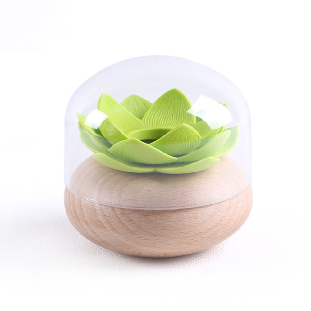 Wang's toothpick Fashion creative individuality cotton toothpick wooden toothpick tanks for household use restaurants with-A