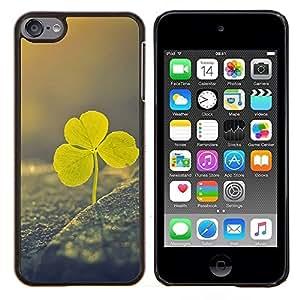 Irlandés del día de St Patrick verde Vignette Clover- Metal de aluminio y de plástico duro Caja del teléfono - Negro - iPod Touch 6