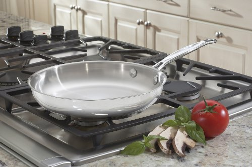 Cuisinart 72224 Chef Classic Stainless 10Inch Open Skillet