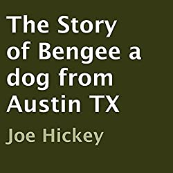 The Story of Bengee a Dog from Austin TX