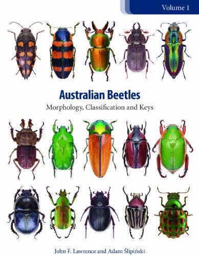 Australian Beetles: Morphology, Classification and Keys (Australian Beetles Series)