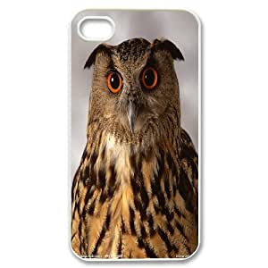 Owl pictures you need is love Hard Plastic phone Case Cover For Iphone 4 4S case cover TMAT358622