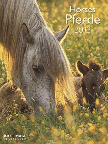 Pferde 2013 Posterkalender