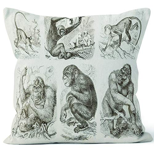 Nine City Engraving Different Apes Old World Monkeys 1882 Home Decorative Throw Pillow Cover,HD Printing Square Pillow case,26