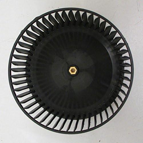 Scholtes – Turbina de motor izquierda para campana Scholtes: Amazon.es: Hogar