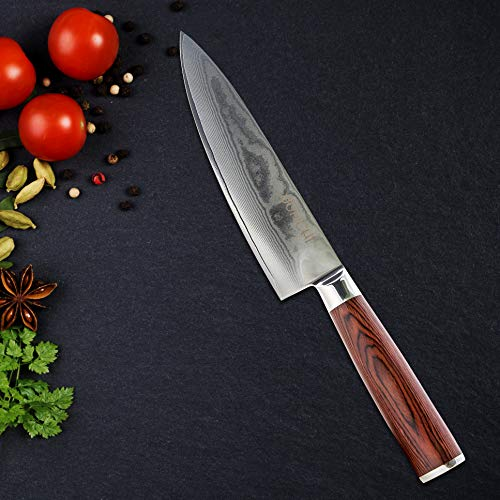 CHEFS KNIFE Professional 8 Inch Blade with Japanese VG-10 Stainless Steel - Chef Kitchen Knives, Beautiful Handcrafted 67 Layer Ultra Sharp Damascus Knife - with Ergonomic, Pakkawood Handle