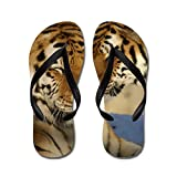 Truly Teague Men's Nuzzling Tiger Love Rubber Flip Flops Sandals
