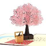 Best Boyfriend Cards - Rotus Handmade Cherry Blossom Pop Up Card, 3D Review