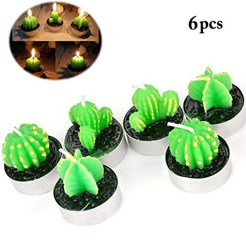 Coxeer Cactus Tealight Candles, 6 Pcs Handmade Delicate Succulent Cactus Tealight Candles for Valentine's Day Birthday Party Wedding Spa Home Decoration(Cactus) -