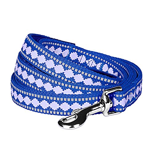 Blueberry Pet 7 Colors 3M Reflective Jacquard Dog Leash with Soft & Comfortable Handle, 5 ft x 3/4