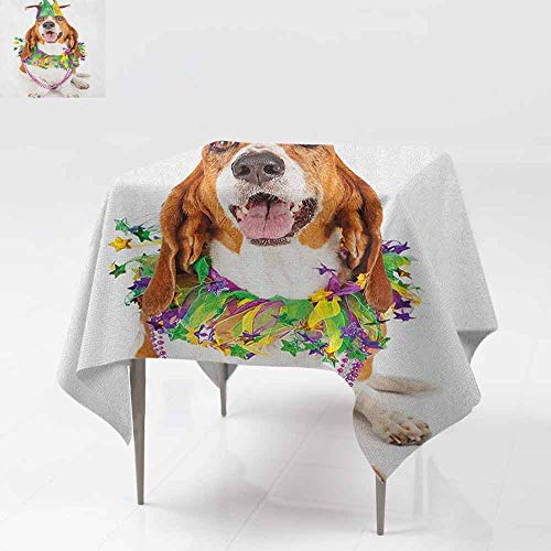 - AndyTours Square Table Cloth,Mardi Gras,Happy Smiling Basset Hound Dog Wearing a Jester Hat Neck Garland Bead Necklace,Party Decorations Table Cover Cloth,54x54 Inch Multicolor