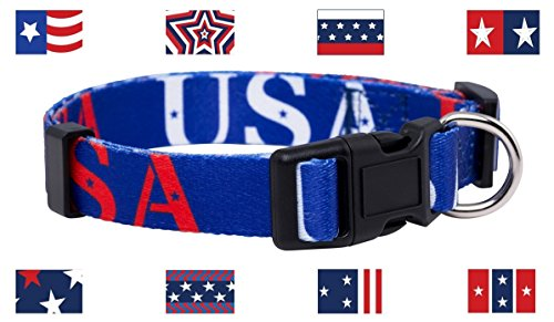 (Native Pup American Flag Dog Collar (Large, USA))