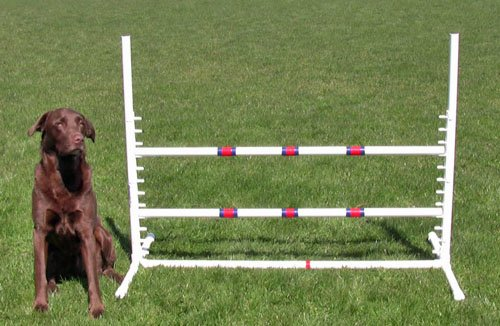 Affordable Agility White Competition Adjustable Jump