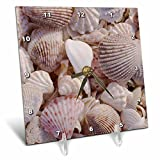 3dRose dc_94909_1 USA, FL, Sanibel, Seashells Washed Up on Beach-US45 RTI0045-Rob Tilley-Desk Clock, 6 by 6-Inch Review
