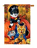 Breeze Decor H112058 Halloween Kittens Fall Vertical House Flag, 28″ x 40″, Multicolor For Sale
