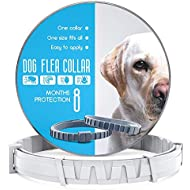 Dog Flea and Tick Control Collar - Treatment and Prevention for Dogs - One Size Fits All - Non-Toxic Waterproof Best Protection and Adjustable - 8 Month Essential Natural Herbal Oil Flea Collar - Gray