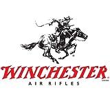 Winchester-177-Cal-Dual-Ammo-with-4-X-32-Air-Riflex-40mm