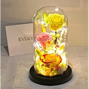 Baobab's wish Preserved Fresh Flower,Enchanted Rose,LED light strip,Natural Eternal Life Rose in Glass Dome Cover with Gift Box 2018(Does not contain battery) (pink-3)