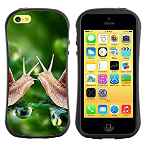 "Pulsar iFace Series Tpu silicona Carcasa Funda Case para Apple iPhone 5C , Caracol verde Rocío Naturaleza Verde Primavera"""